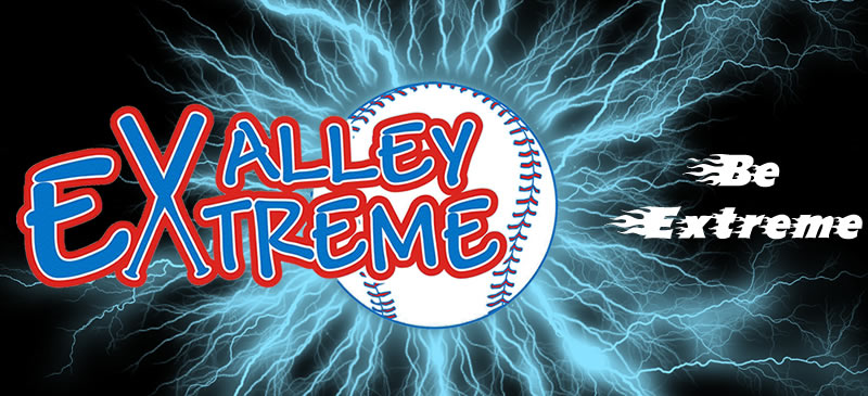 The Valley Extreme Girls Fastpitch Lightning Softball Logo