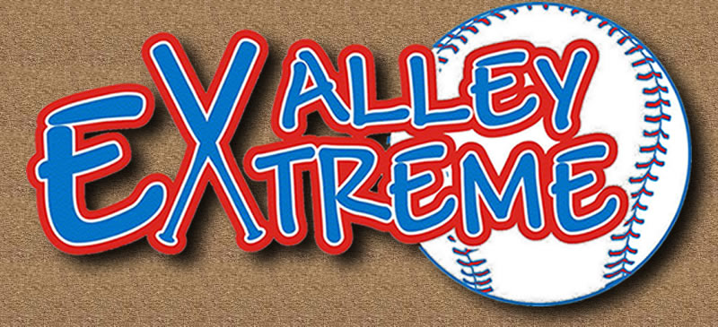 The Valley Extreme Girls Fastpitch Shadow Softball Logo